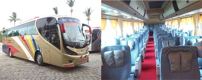 VIP bus is more spacious and comfortable